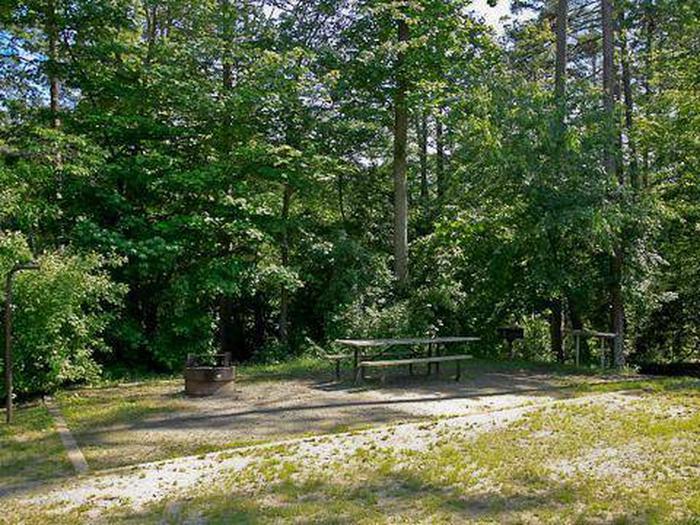 Canebrake Horse Camp-Site 009