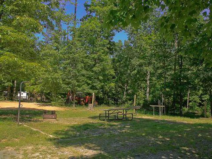 Canebrake Horse Camp-Site 015
