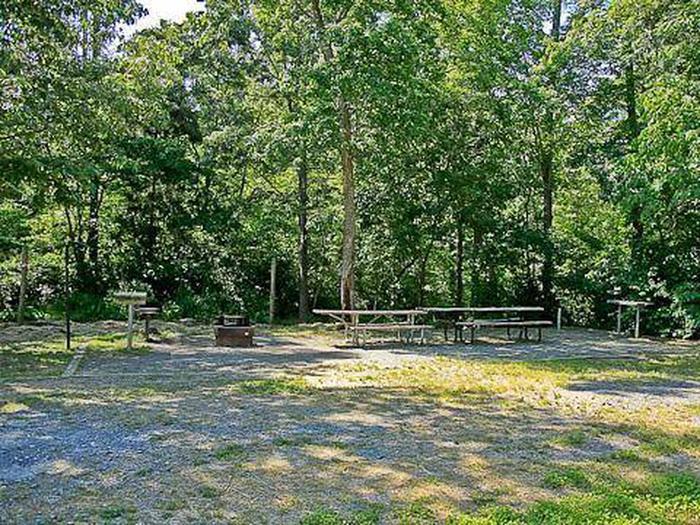 Canebrake Horse Camp-Site 016