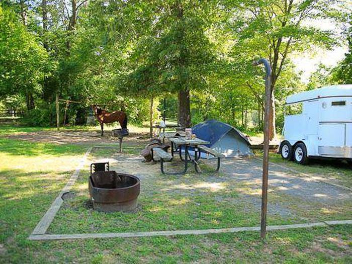 Canebrake Horse Camp-Site 017