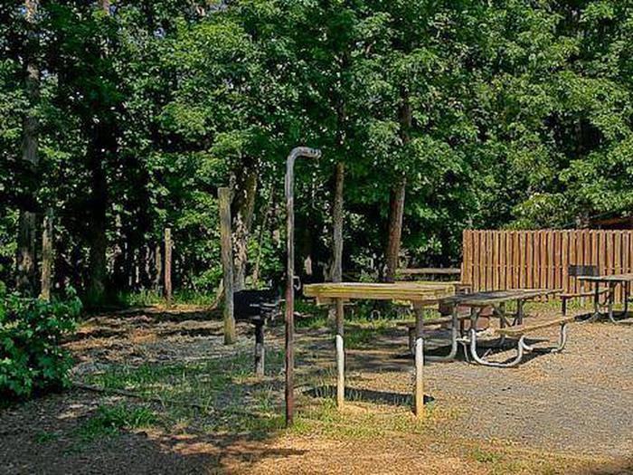 Canebrake Horse Camp-Site 021