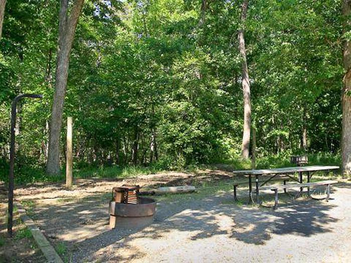 Canebrake Horse Camp-Site 024