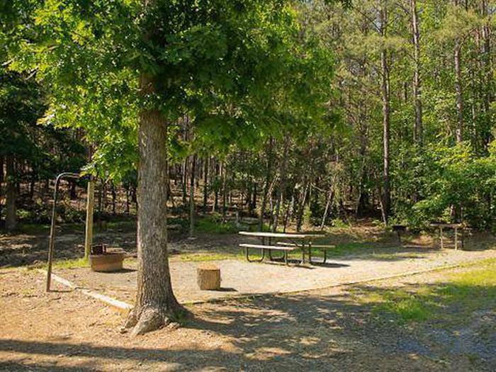 Canebrake Horse Camp-Site 026