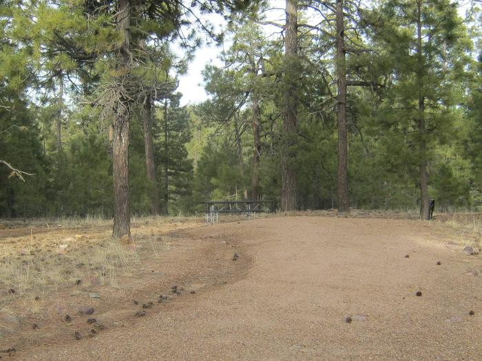 view of Black Canyon Rim Campground site 12 showing picnic table and camp spurBlack Canyon Rim Campground site 12
