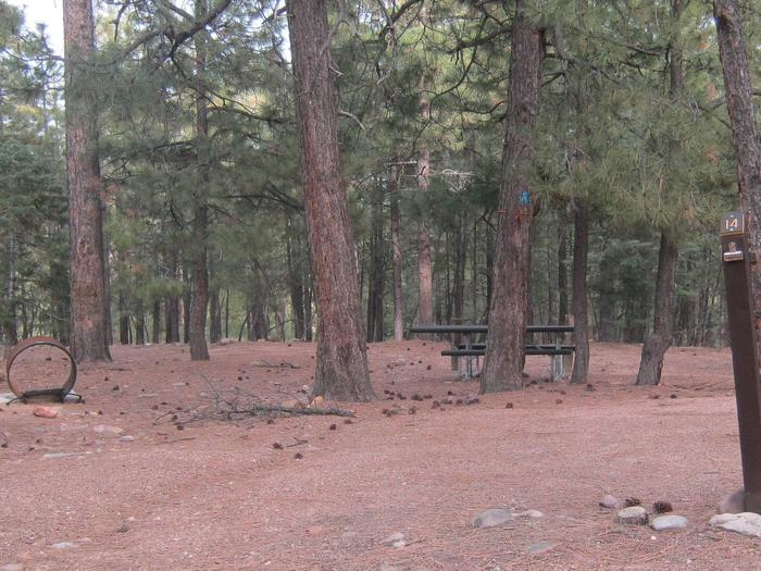 view of Black Canyon Rim Campground site 14 showing picnic table and campsiteBlack Canyon Rim Campground site 14
