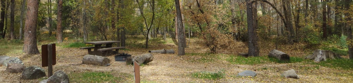 Cave Spring Campground Site #A01 featuring picnic table, food storage, and fire pit.