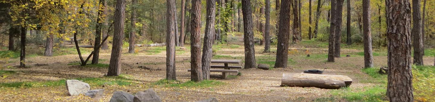 Cave Spring Campground Site #A02 featuring picnic table and fire pit among the trees.