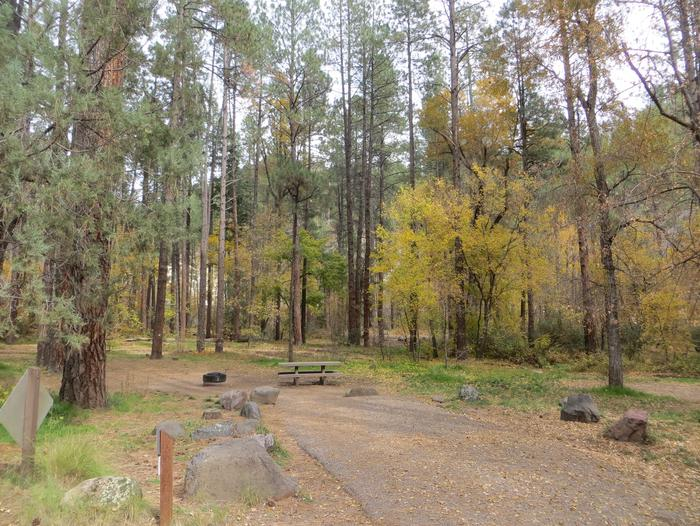 Cave Spring Campground Site #A03 featuring picnic table and fire pit among the trees.