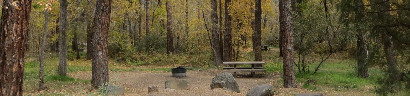 Cave Spring Campground Site #A04 featuring picnic table and fire pit among the trees.