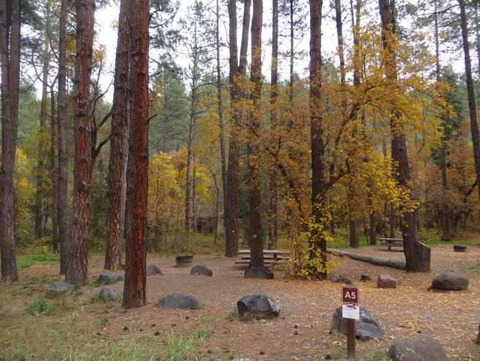 Cave Spring Campground Site #A05 featuring picnic table and fire pit among the trees.