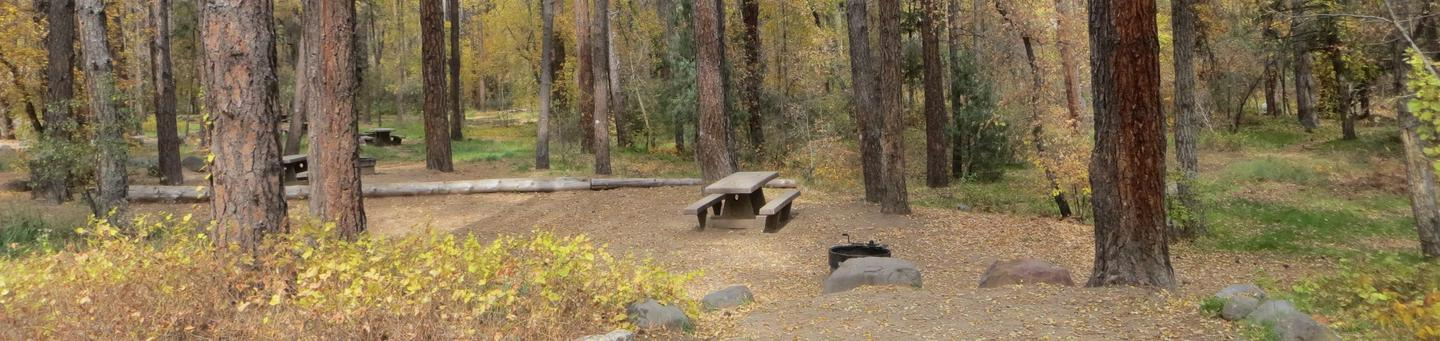 Cave Spring Campground Site #A06 featuring picnic table and fire pit among the trees.
