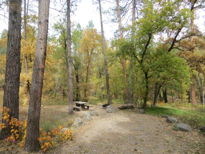 Cave Spring Campground Site #A07 featuring picnic table and fire pit among the trees.