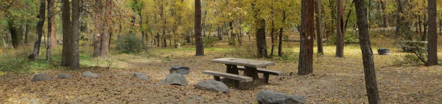 Cave Spring Campground Site #A08 featuring picnic table and fire pit among the trees.