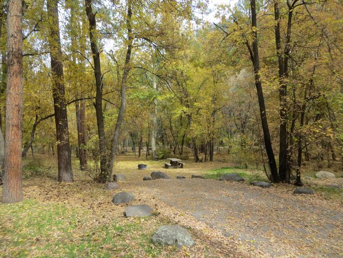 Cave Spring Campground Site #A09 featuring picnic table and fire pit among the trees.
