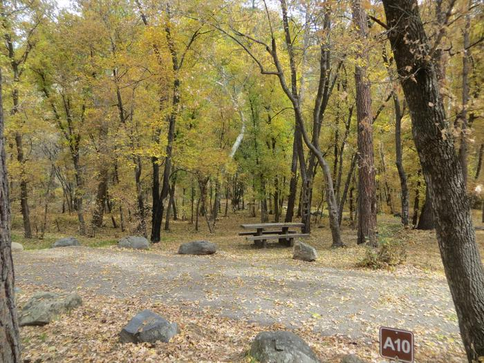 Cave Spring Campground Site #A10 featuring picnic table and fire pit among the trees.