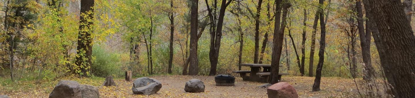 Cave Spring Campground Site #A11 featuring picnic table and fire pit among the trees.