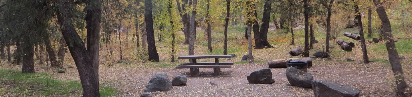 Cave Spring Campground Site #A13 featuring picnic table and fire pit among the trees.