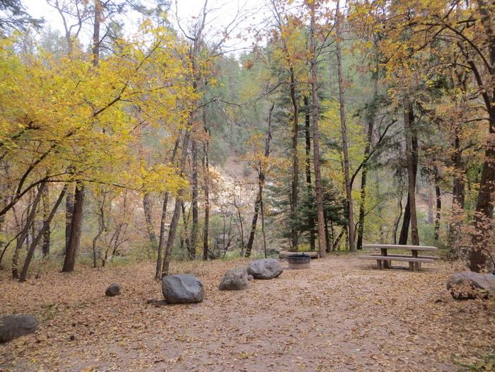 Cave Spring Campground Site #A15 featuring picnic table and fire pit among the trees.