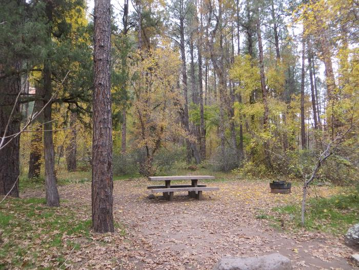 Cave Spring Campground Site #A16 featuring picnic table and fire pit among the trees.