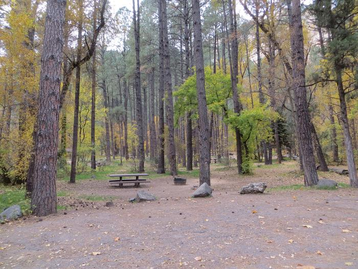 Cave Spring Campground Site #A17 featuring picnic table and fire pit among the trees.