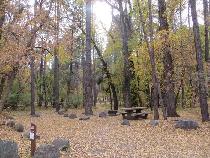 Cave Spring Campground Site #A20 featuring picnic table and fire pit among the trees.