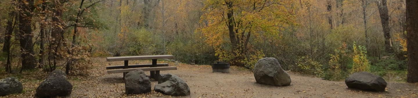 Cave Spring Campground Site #A21 featuring picnic table and fire pit among the trees.