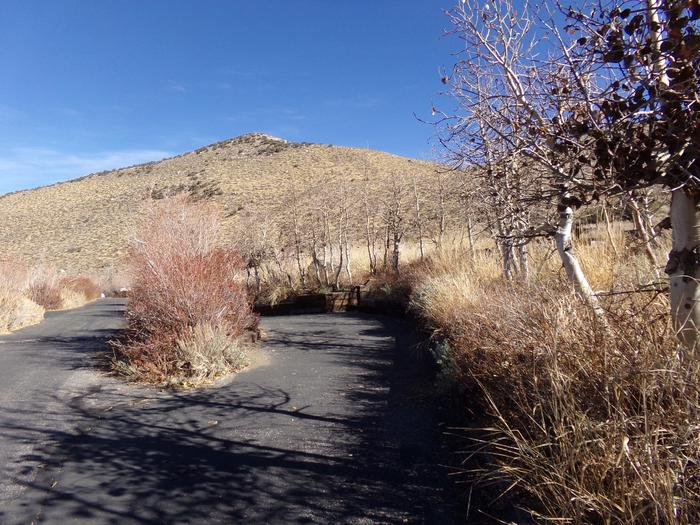 Entrance and parking to site #15 at Convict Lake Campground.