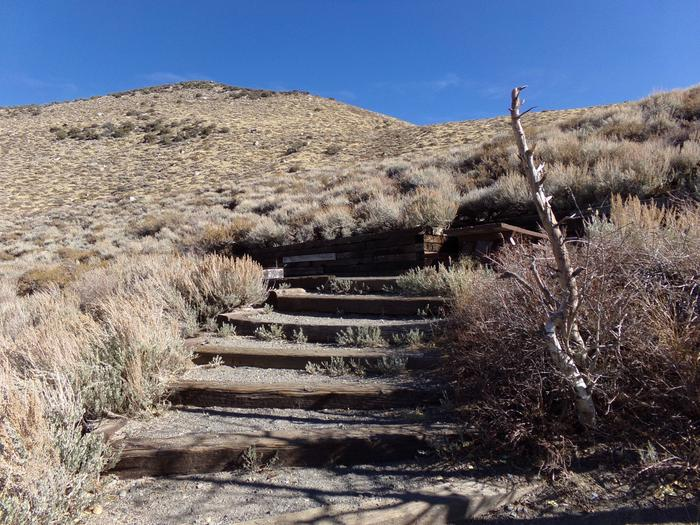 Steps to raised campsite #21 from parking space at Convict Lake Campground.