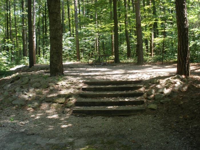 Northface Site 18