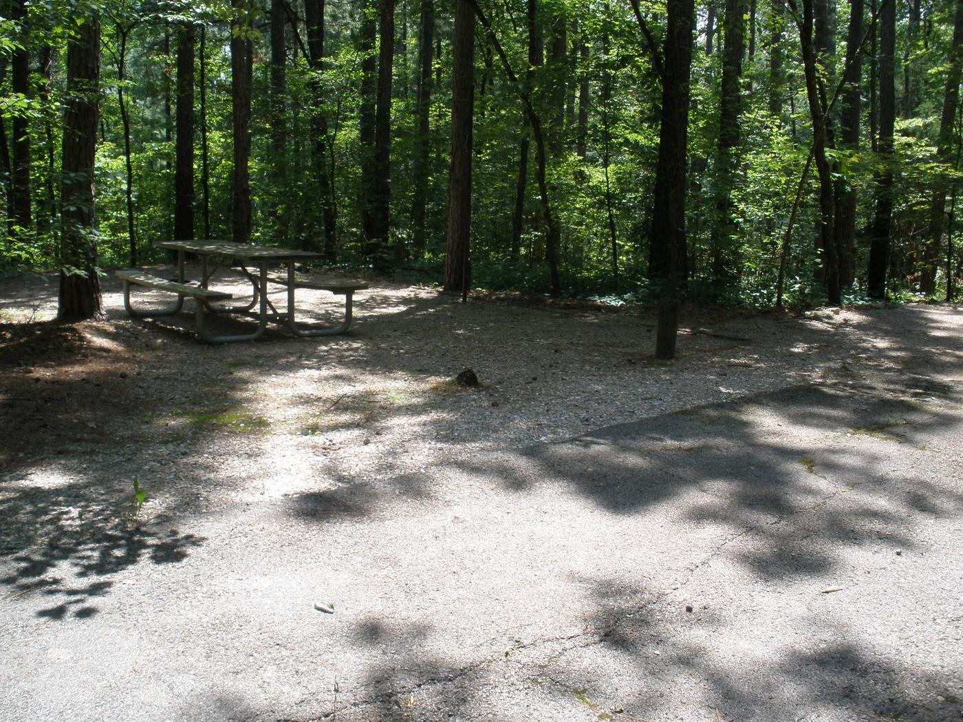 Northface Site 31
