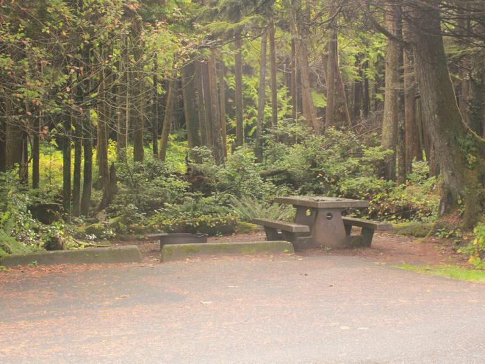Picture of campsite with picnic tableCampsite D12