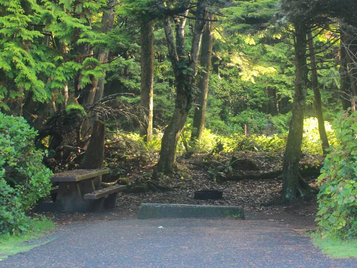 Picture of campsite with picnic tableCampsite D16