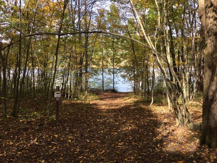 Willow Bay Recreation Area: Site 99