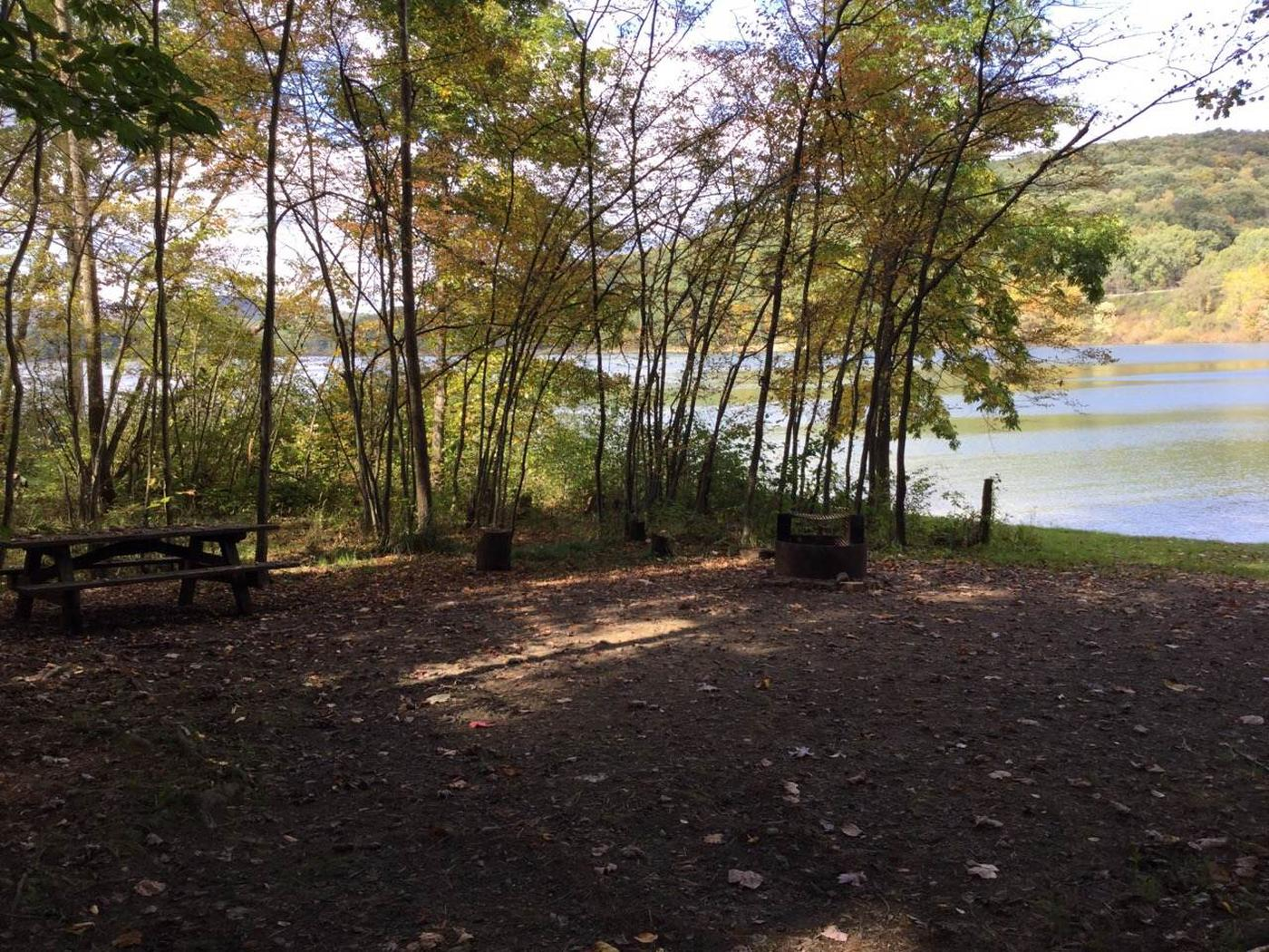 Willow Bay Recreation Area: Site 93