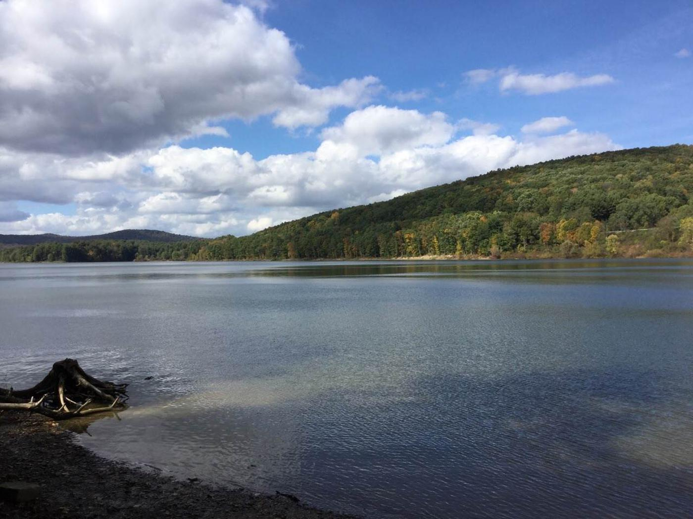 Willow Bay Recreation Area: Site 93 Water