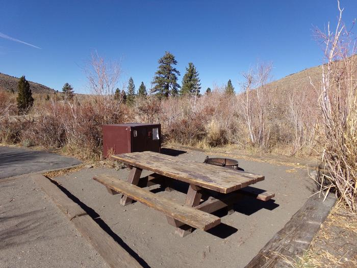 Convict Lake Campground site #65 featuring picnic table, food storage, and fire pit.