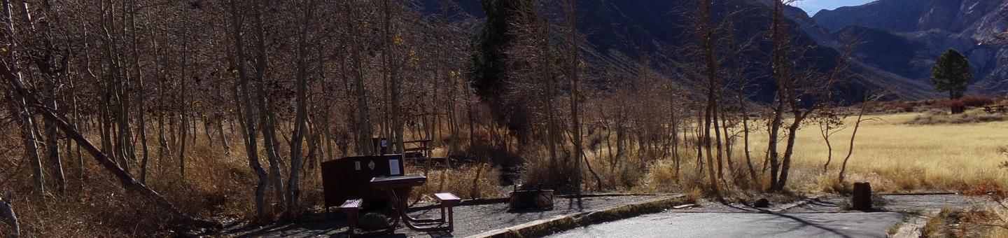 Convict Lake Campground site #69 featuring picnic table, food storage, and fire pit with mountain views backing to meadow.