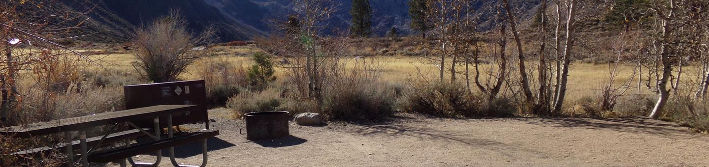 Convict Lake Campground site #72 featuring picnic table, food storage, and fire pit with meadow and mountain views.