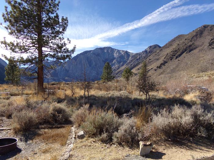 View of meadow and mountain from site #76, Convict Lake Campground.