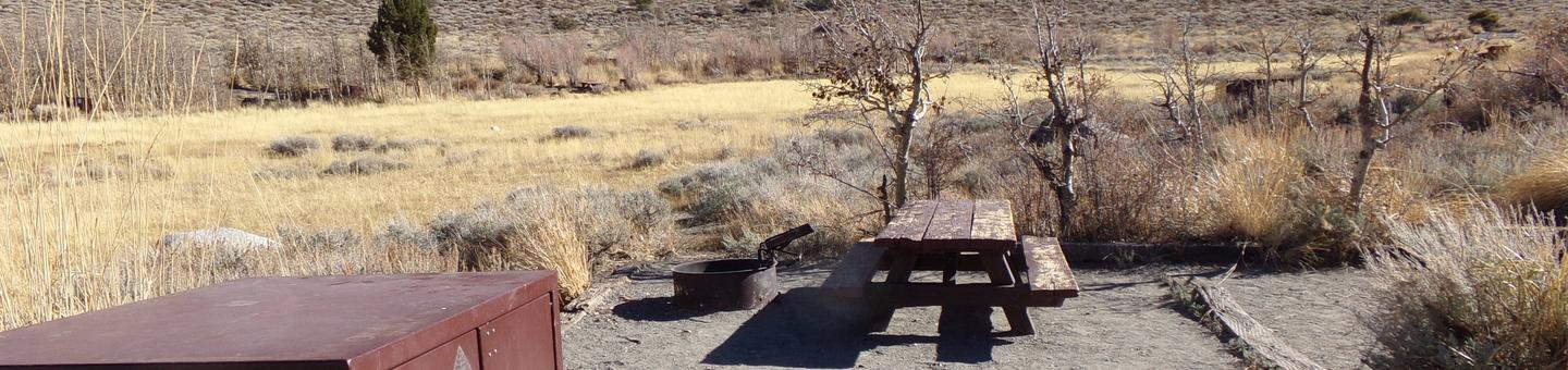 Convict Lake Campground site #80 featuring picnic table, food storage, and fire pit.