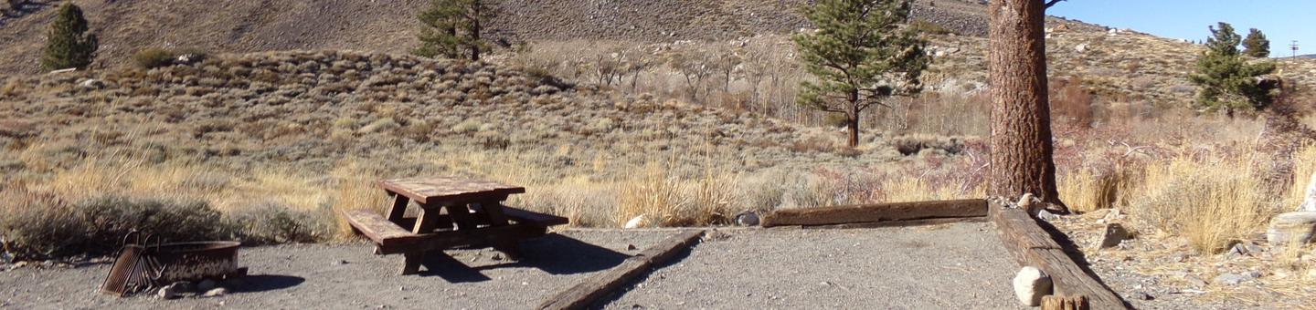 Convict Lake Campground site #81 featuring picnic table, food storage, and fire pit.