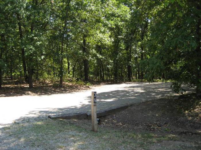 Osage Cove Campsite #38