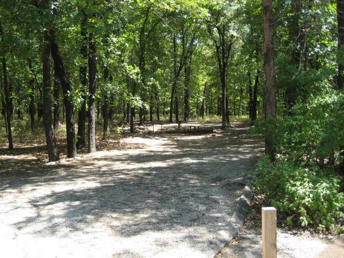 Osage Cove Campsite #6