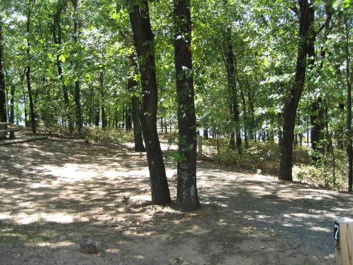 Osage Cove Campsite #7