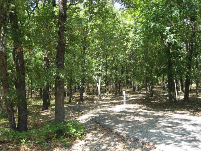 Osage Cove Campsite #27