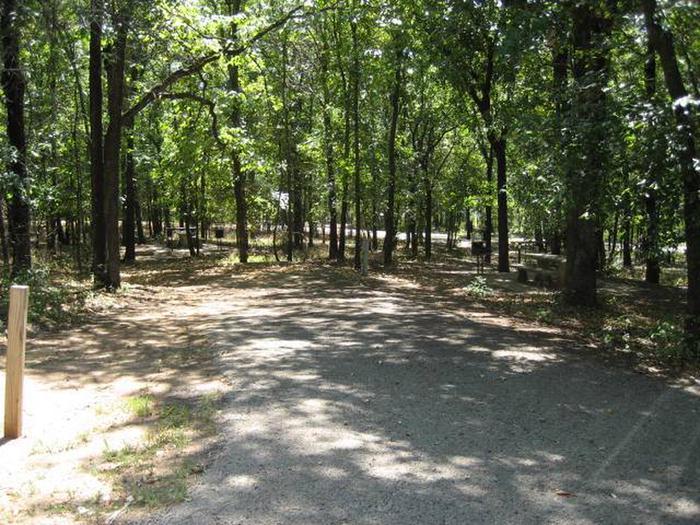 Osage Cove Campsite #33