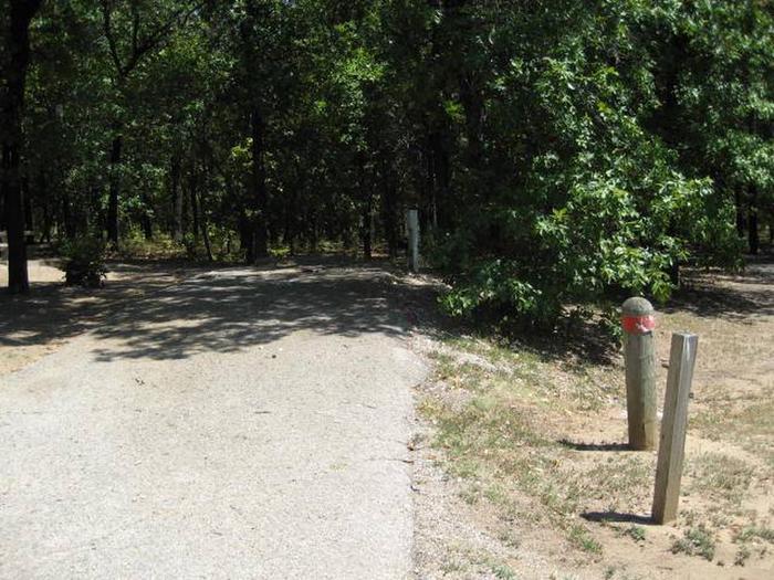 Osage Cove Campsite #37