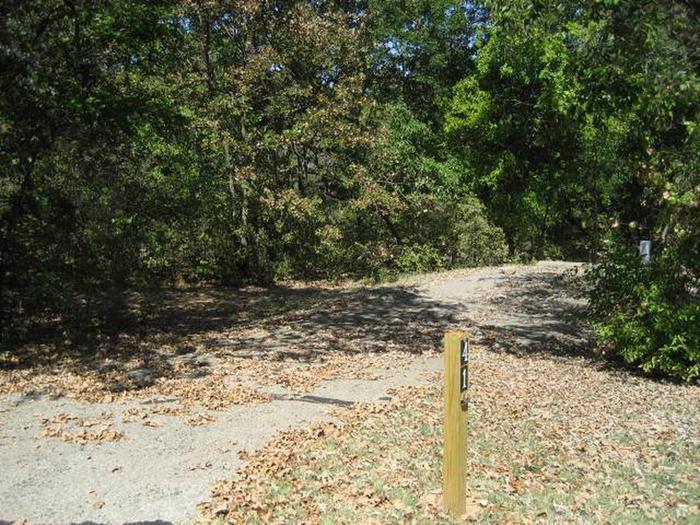 Osage Cove Campsite #41