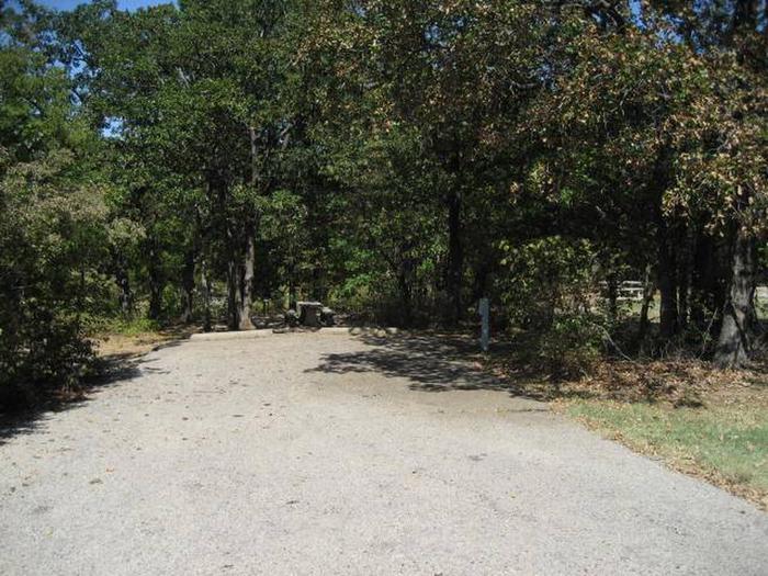 Osage Cove Campsite #43