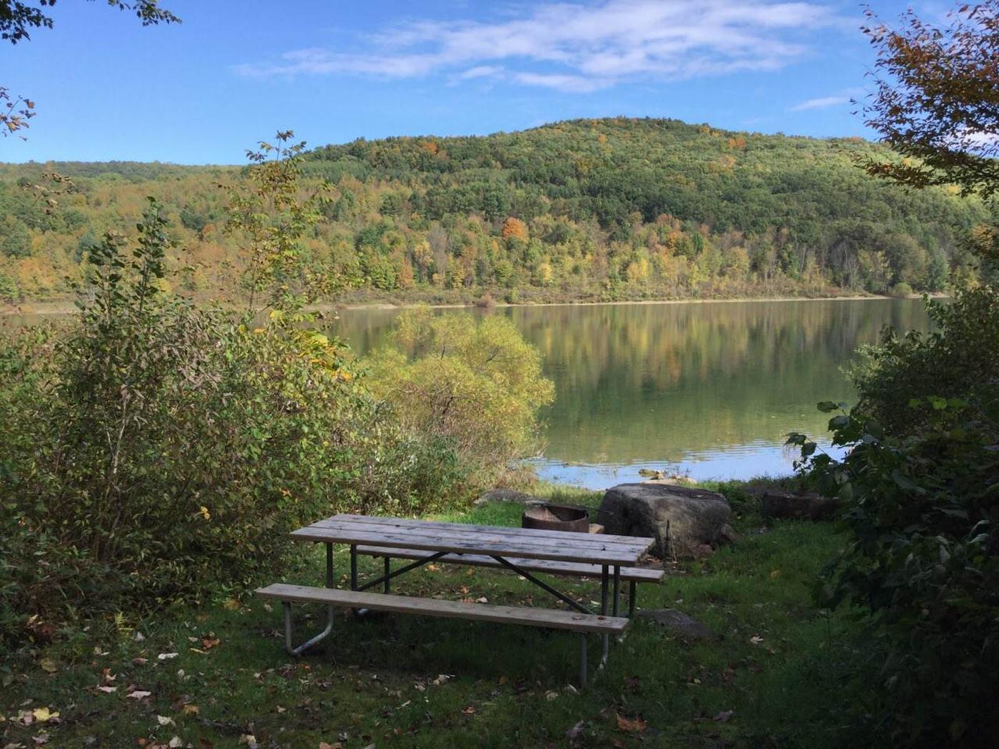 Willow Bay Recreation Area: Site 77